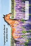 Carnet de santé du cheval: La garantie d'un cheval en pleine forme | 15,24 x 22,86 cm | format porte feuille