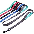 Vivaglory Dog Training Leash with 2 Padded Handles, Heavy Duty 6ft Long Reflective Safety Leash Walking Lead for Medium to Large Dogs, Grey