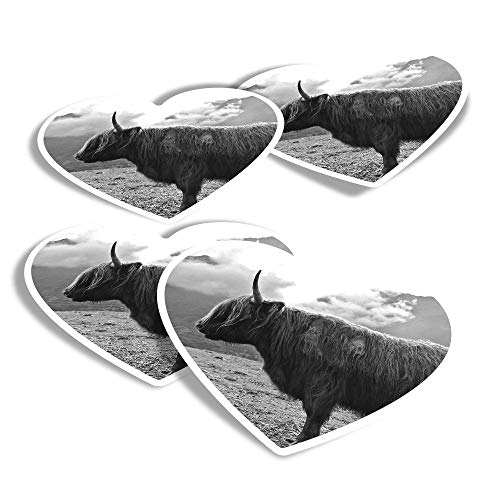 Vinyl Heart Stickers (Set of 4) - Isle of Skye Highland Cow Scotland Fun Decals for Laptops,Tablets,Luggage,Scrap Booking,Fridges #16299