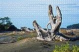 カナダビーチトフィーノバンクーバー島ブリティッシュコロンビア州パズル木製ジグソーパズル大人用1000ピース旅行のお土産贈り物