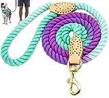 Braided Pet Leash, 5ft Pet Leash, Cute Pet Leash, Pet Leash, Ombre Rope Dog Leash, Rope Pet Leash, Leather Pet Leash, Dog Leash (Turquoise & Purple Ombre)