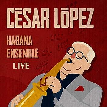 20 Años de Habana Ensemble (En Vivo)