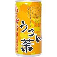 ハイサイ うこん茶 190g×30本