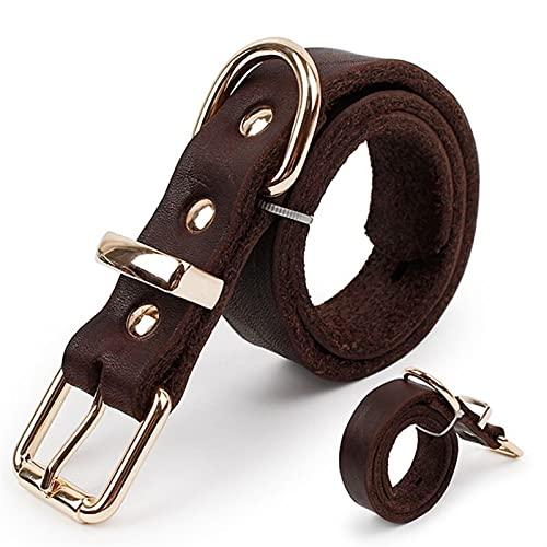 JHGJHG Collar de Perro de Cuero para Mascotas para Perros Grandes Productos para Mascotas Perros Cuello de Animal doméstico Cuello Genuino (Size : S01)
