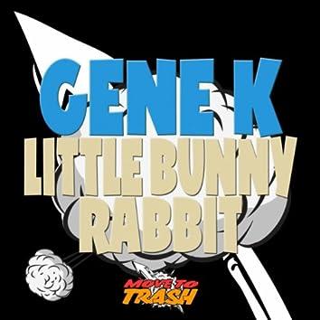 Little Bunny Rabbit