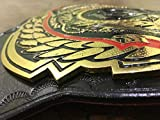 Grid Era Sports ROH Ring of Honor World Heavyweight Title Championship Replica Belt 4MM Zinc Plated