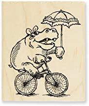 Best hippo cycle images Reviews