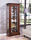 acme Addy Curio Cabinet, Cherry Traditional/Cherry/