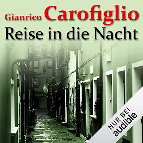 Reise in die Nacht audiobook cover art