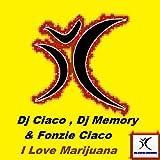 I Love Marijuana (DJ Fonzies Choco Fast Radio Edit)