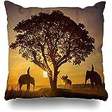 Sofakissen in Thailand Elefanten Bäume Sonnenuntergang Elefant Orange Afrika Afrikanische...
