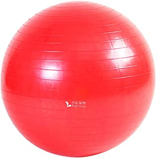 WXYXG Yoga Ball, Thicken Explosion-Proof Gym Ball Lose Weight Slimming Child Complaint Yoga Ball (Color : #2)