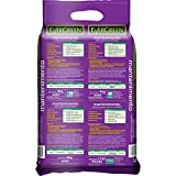 Zoom IMG-1 kb concime evergreen mantenimento 4kg