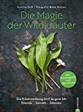 Wildkräuter Kochbuch: Die Magie der Wildkräuter. Eine Kräuterwanderung durch das ganze Jahr. Erkennen, sammeln, zubereiten – Mit Extraheft zum Mitnehmen. Wildkräuter bestimmen, Rezepte Wildpflanzen.