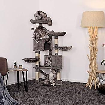 dibea Arbre à chat avec griffoir arbre à grimper robuste en peluche Hauteur 145 cm couleurs différentes