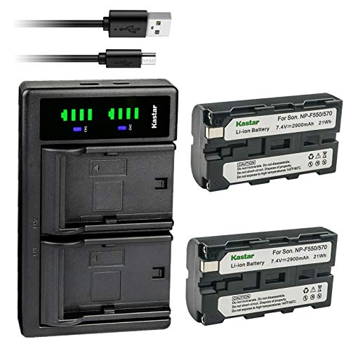 Kastar 2-Pack NP-F550/F570 Battery and LTD2 USB Charger Replacement for Sony CCD-TR414 CCD-TR415 CCD-TR416 CCD-TR425 CCD-TR427 CCD-TR500 CCD-TR511 CCD-TR512 CCD-TR515 CCD-TR516 CCD-TR517 CCD-TR555