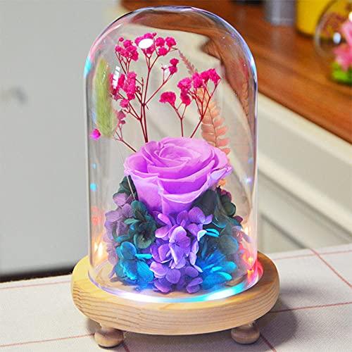 Kit de Rosas La Bella y la Bestia Rosas secas inmortales luz...