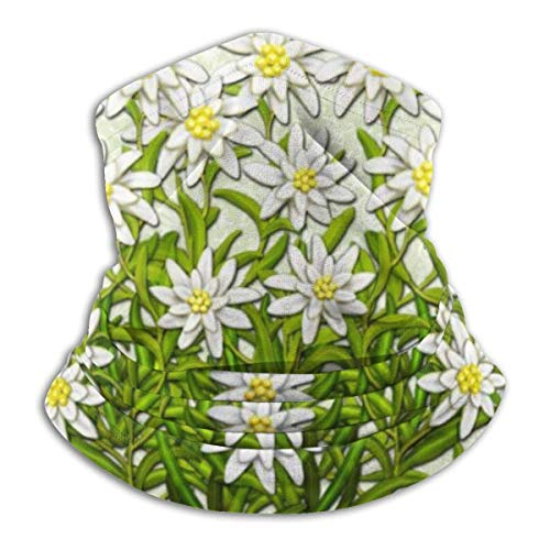 IZOU Edelweiss Swiss Mountain Flowers Neck Gaiter Face Mask,Multifunction for Man Women seasons Magic Scarf Bandana Balaclava