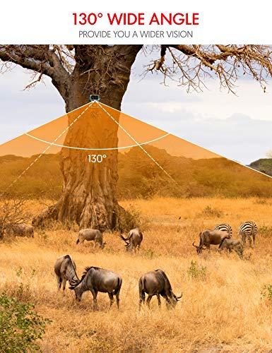 Victure HC400 Wildkamera 20MP 1080P Low-Glow Erfahrungen & Preisvergleich