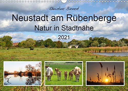 Neustadt am Rübenberge Natur in Stadtnähe (Wandkalender 2021 DIN A3 quer)