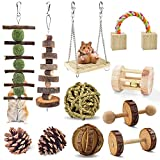 ERKOON Hamster Chew Toys 12 Pack Gerbil Rat Guinea Pig Chinchilla Toys Accessories, Natural Wooden Dumbbells Exercise Bell Roller Teeth Care Molar Toy for Hamster Rabbits Parrot Syrian