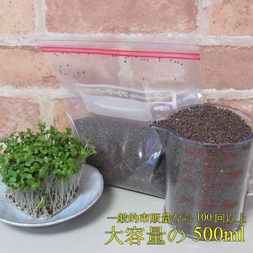 業務用小分け ブロッコリー(スプラウト)のタネ 500ML これだけあれば約100回以上収穫できます 野菜 種 ミニ野菜