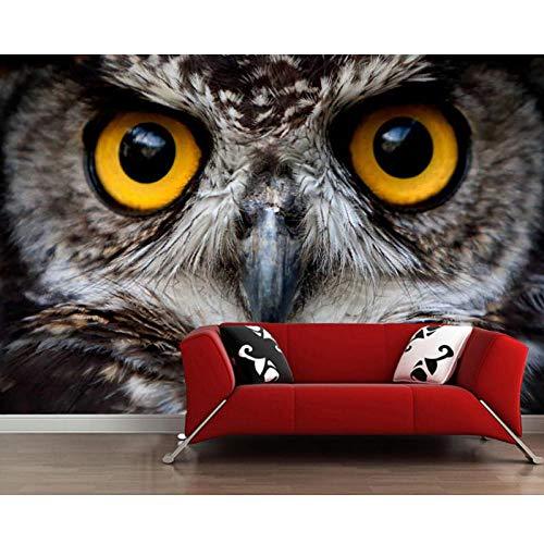 Uil oog Close-up dier 3D behang, woonkamer tv muur slaapkamer muur papieren, Home Decor Restaurant bar muurschildering 280 cm (B) x 180 cm (H)