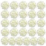 Auihiay 26 Pieces Silk Hydrangea Flowers...