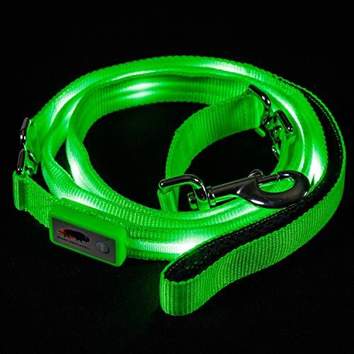 Blazin' Safety LED Dog Leash - USB Rechargeable Flashing Light, 6 Ft, Water Resistant – Avoid Danger – Green