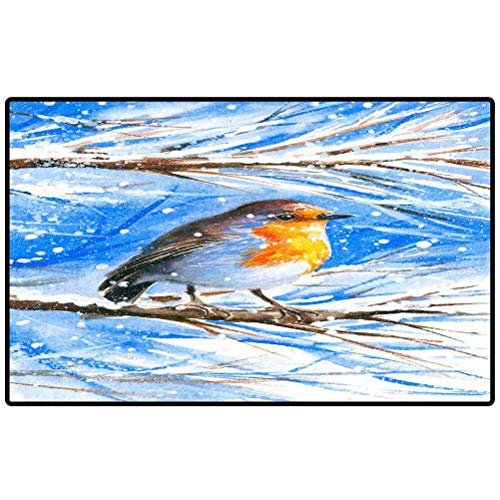 Rug Shoes Mat Cute Robin Sitting on a Branch of a Tree During The Cold Winter Picture i Have Created with 122405971 Office Decorative Entry Rug Garden/Kitchen/Bedroom Mat