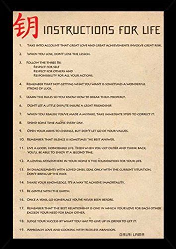 Instructions for Life - Dalai Lama Poster in a Black Wood Frame (24x36) 24618-PSA008788