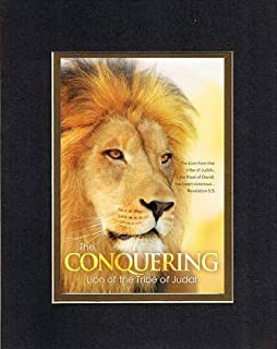The Conquering: Lion of the Tribe of Judah - Revelation 5:5. . . 8 x 10 Inches Biblical/Religious Verses set in Double Beveled Matting (Black on Gold) - A Timeless and Priceless Poetry Keepsake Collection