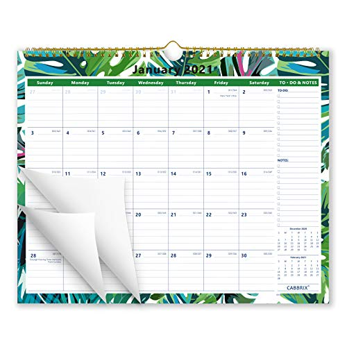 Cabbrix 2021 Year Monthly Wall Calendar, Ruled Blocks, 15 x 12 Inches, Family Schedule Calendar for Home Schooling Plan