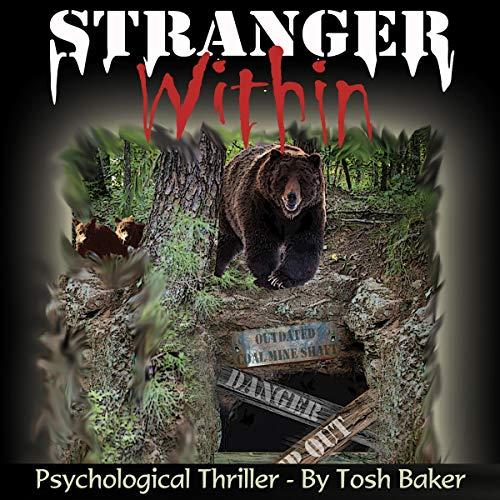 Stranger Within audiobook cover art
