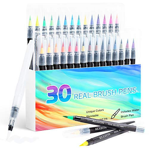 Watercolor Brush Pens, Real Brush Pen, 30 Watercolor Painting Markers with Flexible Nylon Brush Tips for Coloring, Calligraphy and Drawing (1 Water Brush Pens for Blending)