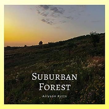 Suburban Forest