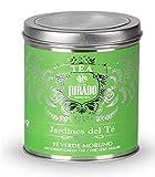 Jardines del Té - Té verde con hierbabuena