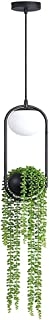 Shan-S Nordic Plant Chandelier Flower Pot Aisle Restaurant Beautiful Sky Garden LED Lamp Hanging Planter for Window, Indoor Herb Garden Wall and Ceiling Planter, White/Black