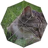 Paraguas automático Cat Tabby Down Grass Hunting Travel Conveniente a Prueba de...