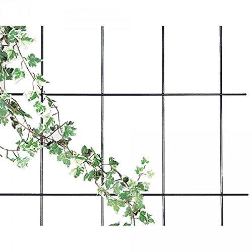 Gartenwelt Riegelsberger Spalier 150 x 60 cm, Rankgitter, braun, 4-strebig, extra stark Ø 8 mm, Wandspalier
