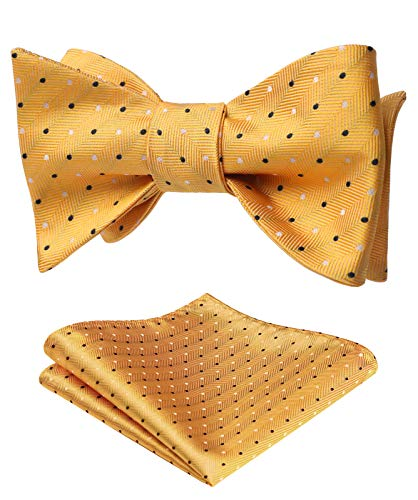HISDERN Polka Dot Self Bow Tie Panuelo Fiesta Boda Bowtie & Pocket Square Set