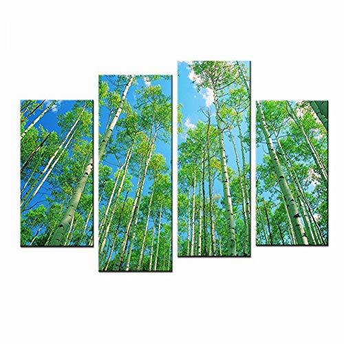 HOMEDCR Die Birkenwald Gemälde Kunstdrucke Auf Leinwand Grüne Bäume Hd Wasserdicht Leinwanddruck Wanddekor Für Wohnzimmer