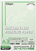(業務用セット) コピー&プリンタ用紙 カラータイプ A3 100枚入 HCP-3101-G【×5セット】