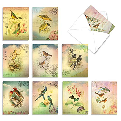 The Best Card Company - 10 Bird Note Cards Blank (4 x 5.12 Inch) - All Occasion Cards with Envelopes, Boxed Set - Songbird Notes