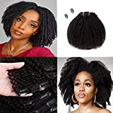 Saga Queen Brazilian Afro Kinky Curly Clip In Hair Extensions 8pcs 20clips 120g/pck Brazilian Virgin Human Hair Clip Ins (1 bundle 8inch, natural black)