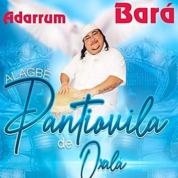 Adarrum Bará