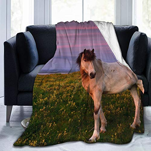 Cap pillow Manta de forro polar de 127 x 152 cm – Caballos Caballos Campo de Caballos Sunset Home franela suave y cálida manta de felpa para cama/sofá/oficina/camping
