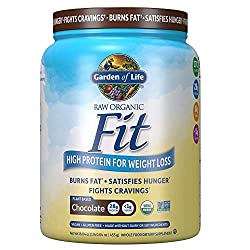 Garden of Life Raw ,Organic Fit Powder, Chocolate