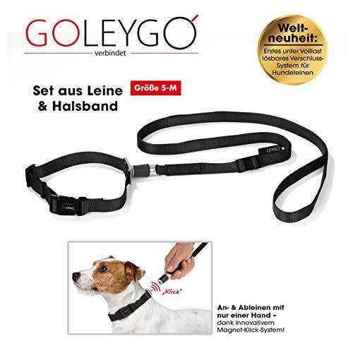GOLEYGO Hundeleine & Halsband, schwarz, Größe S (29-43 cm Halsumfang) | innovatives Magnet-klick-System mit Kugelstift, unter Vollast lösbar | für Hunde bis max. 40 kg | Leinenlänge 120-200 cm - 2