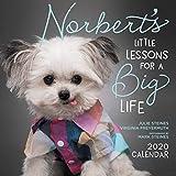 Norbert s Little Lessons for a Big Life 2020 Wall Calendar